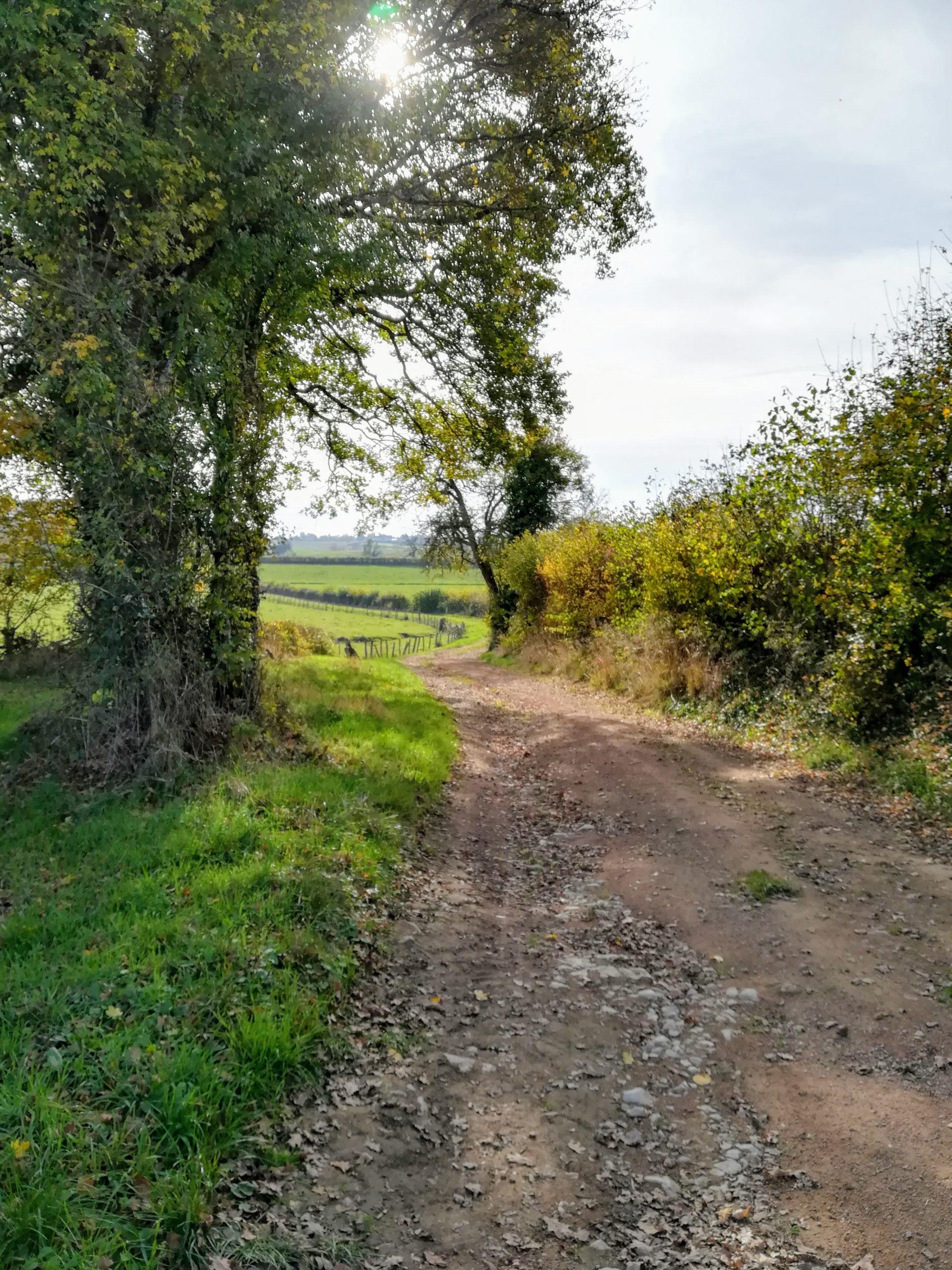 chemin campagnard